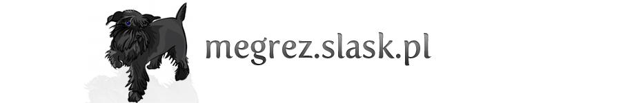 Jak zadbać o psią sierść | Porady weterynaryjne - http://megrez.slask.pl/